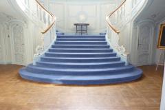 Velvet Carpet